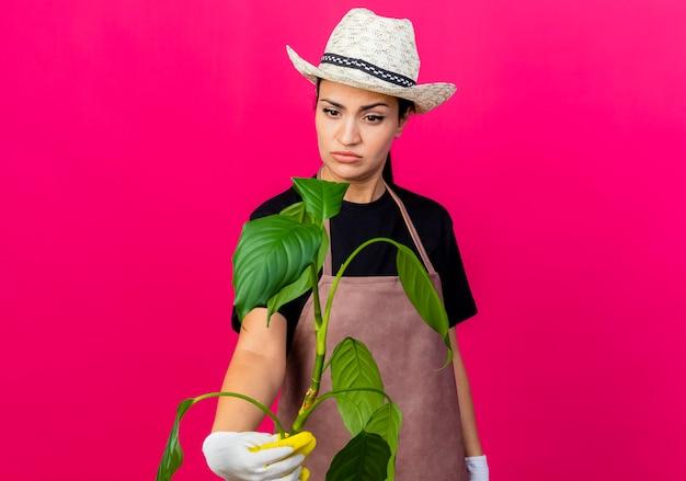 Gärtnerin der jungen schönen frau in der gummihandschuhschürze und in der hut, die pflanze hält, die sie verwirrt betrachtet, die über rosa wand steht