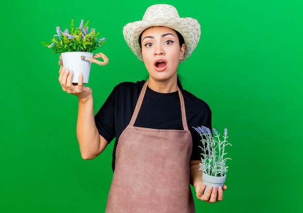 Gärtnerin der jungen schönen frau in der schürze und im hut, die topfpflanzen halten, die front betrachten, die überrascht ist, über grüner wand zu stehen