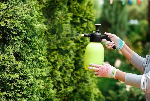 Gärtnerin, die pflanzen im hausgarten sprüht.