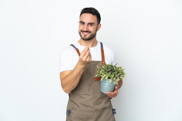 Gärtnermann, der eine pflanze lokalisiert auf weißem hintergrund hält, der geldgeste macht