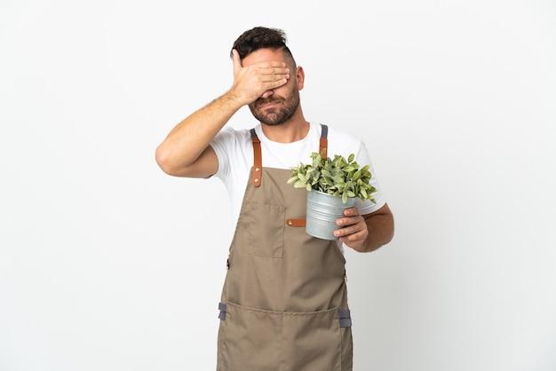 Gärtnermann, der eine pflanze über lokalisierten weißen hintergrund hält, der augen durch hände bedeckt. ich will nichts sehen