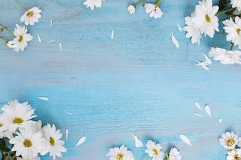 Gänseblümchen auf hölzerner schäbiger Oberfläche