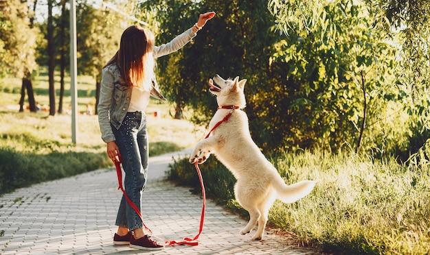 Ganzes porträt einer bezaubernden jungen frau, die ihren weißen husky im park bei sonnenuntergang nach der arbeit spielt und verfolgt.