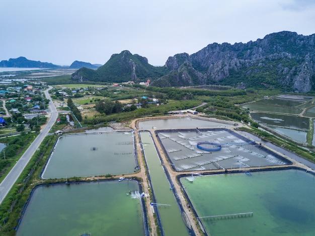Garnelenfarmen von oben genanntem in sam roi yot national park, thailand. drohne, luftbild, draufsicht