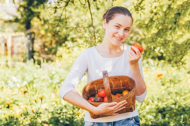 Garten- und landwirtschaftskonzept. junge frau landarbeiter hält korb, der frische reife organische tomaten im garten pflückt. gewächshausprodukte. gemüseproduktion.