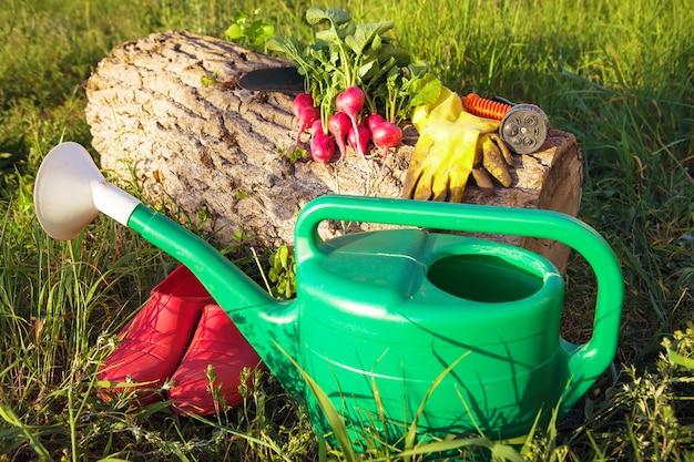 Gartenarbeit beim anbau von bio-gemüse zu hause