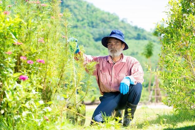 Gartenarbeit der alten leute, alter mann mit gartenwerkzeug, das im hinterhofgarten arbeitet.