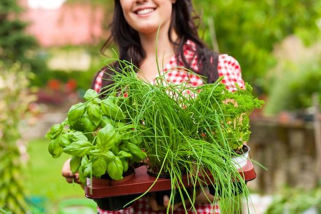 Gartenarbeit im sommer - frau mit kräutern