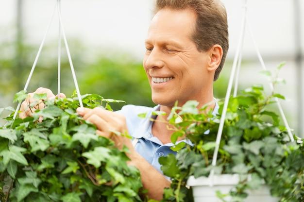 Gartenarbeit. schöner reifer mann, der in einem garten arbeitet und lächelt