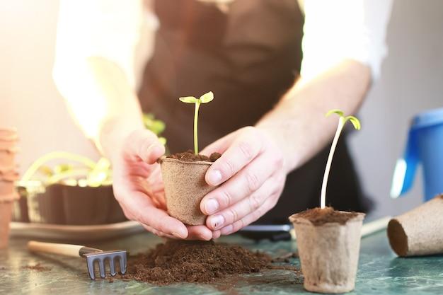 Gartenarbeit zu hause handsprossentisch