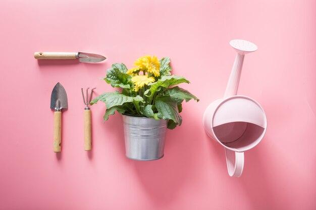 Gartenarbeithintergrund mit gießkannen- und gerberablumen