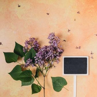 Gartenarbeitkonzept der flachen lage mit copyspace