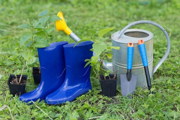 Gartenarbeitkonzept. gummigartenspatel, rechen, gummistiefel, gießkanne und jungbusch zum aussäen. äußeres foto.