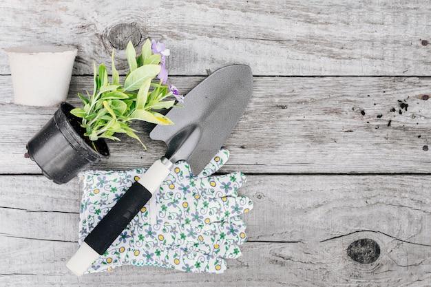 Gartenarbeitkonzeptzusammensetzung der draufsicht