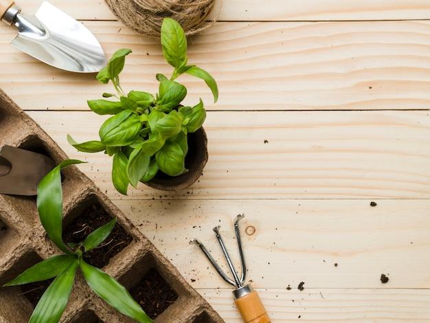 Gartengeräte und -anlagen der draufsicht