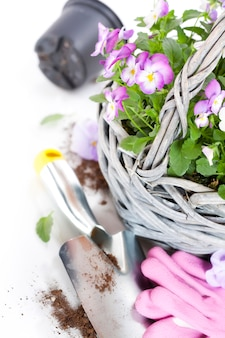 Gartengeräte und blumentopf mit blumen