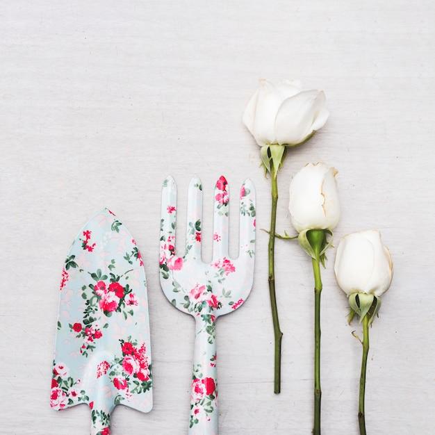Gartengeräte und rosen