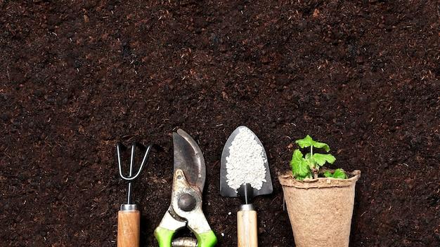Gartenhintergrund. gartengeräte und pflanzen auf einem bodenhintergrund mit kopierraum für text. frühlingsarbeiten, draufsicht mit freiem textraum.