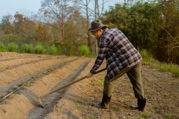 Gartenkonzept ein männlicher bauer, der eine hacke verwendet, die in den boden gräbt, um gemüsebeete herzustellen, die sich auf den anbau der pflanzen vorbereiten.