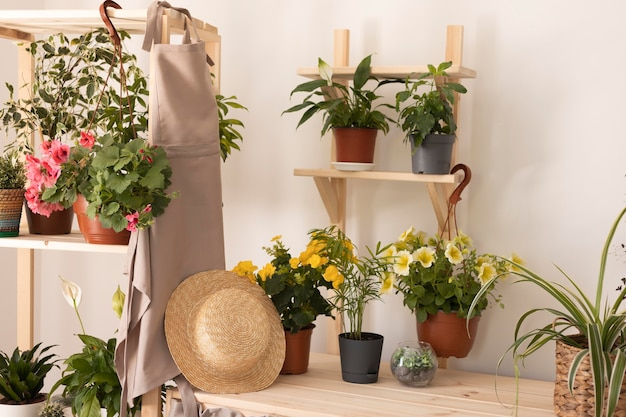 Gartenkonzept mit pflanzen und schürze