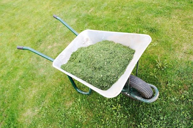 Gartensaison - grüner rasen mit schubkarre
