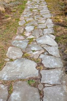 Gartensteinweg mit gras, das zwischen den steinen wächst