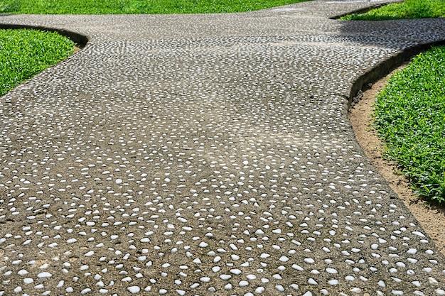 Gartenweg bedeckt mit kleinen weißen steinen. kiesweg im garten
