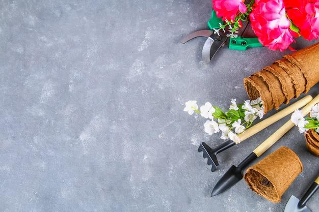 Gartenwerkzeuge und töpfe auf einem grauen konkreten hintergrund. draufsicht, raum kopieren.