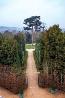 Gasse mit weglinie der bäume im versailler garten im winter. frankreich.
