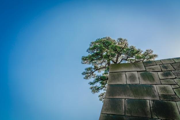 Gebäude japan garten alten historischen