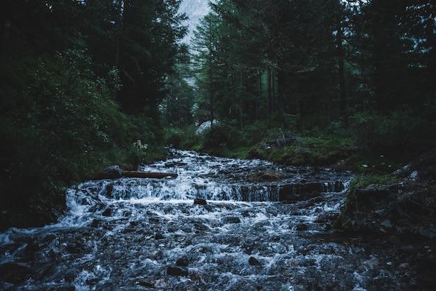 Gebirgsbach fließt im dunklen wald