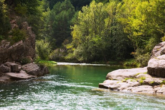 Gebirgsfluss mit felsigem flussufer. pyrenäen