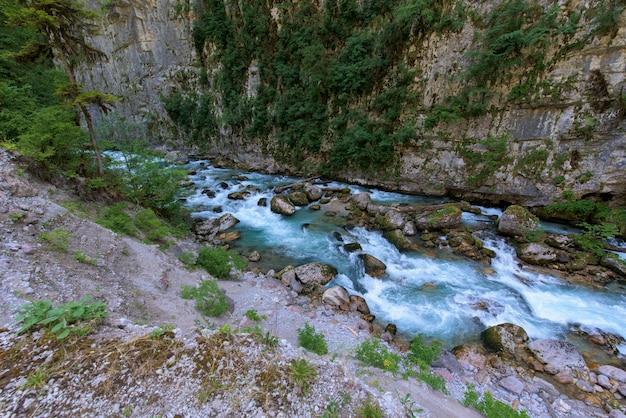 Gebirgsfluss zwischen steilen klippen