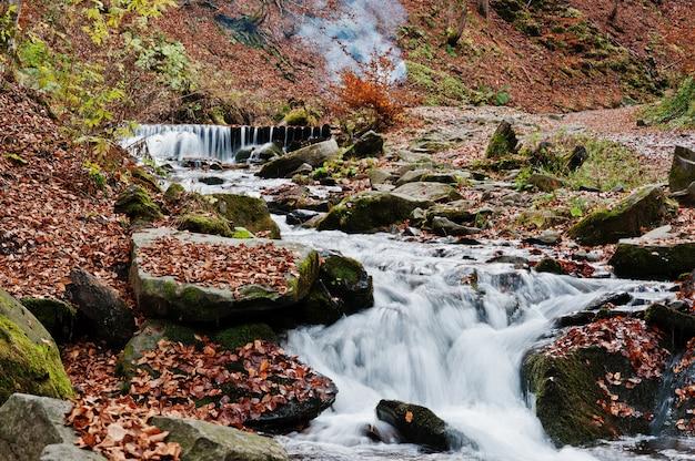Gebirgsflussstromschnellen am majestätischen wald des herbstes mit gefallenen blättern und rauch des feuers