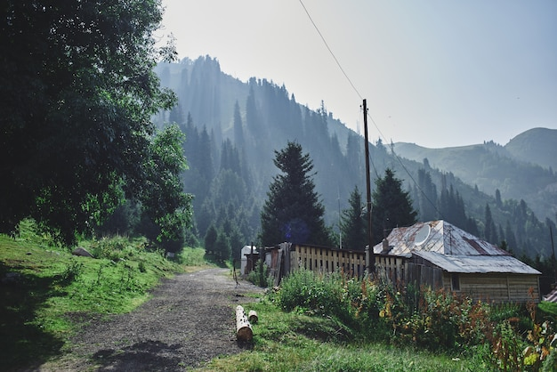 Gebirgshaus, grüne landschaft des sommers in kasachstan almaty, natur von zailiysky alatau