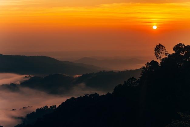 Gebirgsnebel im sonnenaufgang, nebel über berg während des sonnenaufgangs. schöne landschaft bei sonnenaufgang.