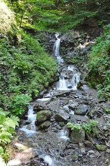Gebirgswasserfall in krasnaja poljana, sotschi, russland