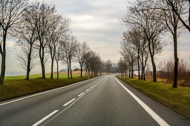 Gebogene zweispurige landstraße, die durch bäume sich windet.