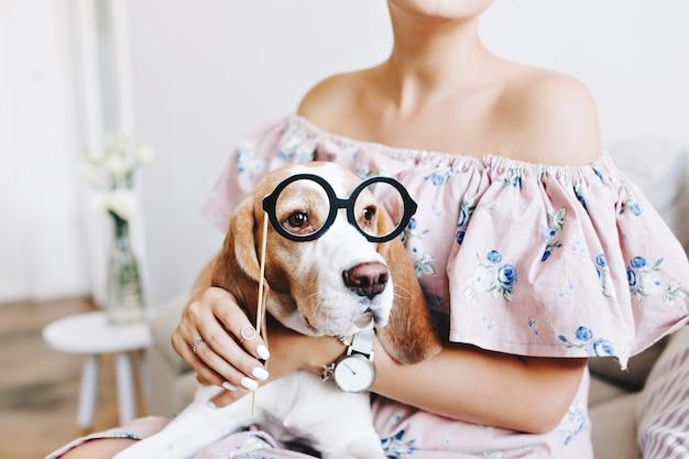 Gebräuntes mädchen im kleid mit offenem oberteil, das auf ihren knien erstaunlichen beagle-hund hält, der sehr lustig aussieht