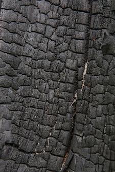 Gebrannter baumrindenbeschaffenheitshintergrund. strukturiertes muster des alten holzbaumstammes