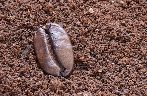 Gebratene bohne des einzelnen kaffees auf pulver
