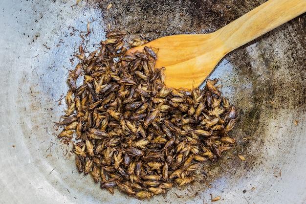 Gebratene insekten als snack