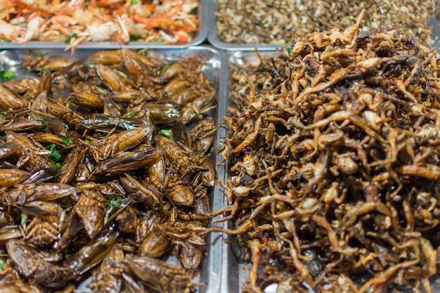 Gebratene insekten verschiedene arten ist das essen ist leicht in thai street food markt zu finden