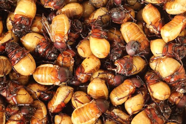Gebratene insekten