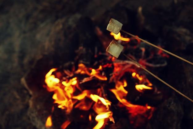 Gebratene marshmallows auf dem feuer in der nacht. camping im wald.