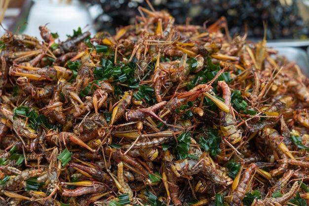 Gebratener thailändischer straßenlebensmittelmarkt der insekten.