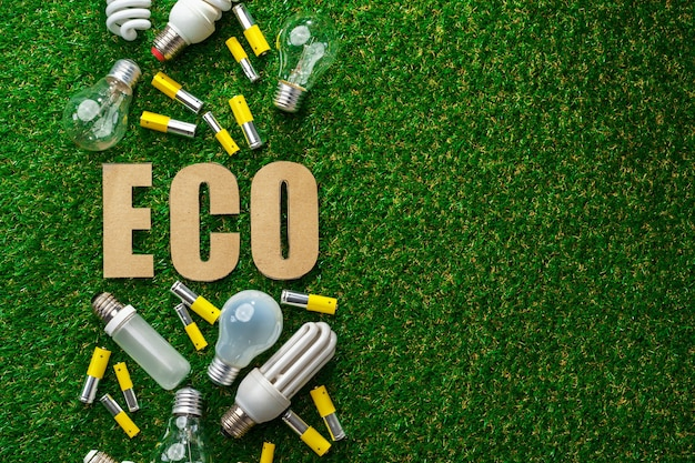 Gebrauchte metall-lithium-alkalibatterien und glühbirnen auf gras