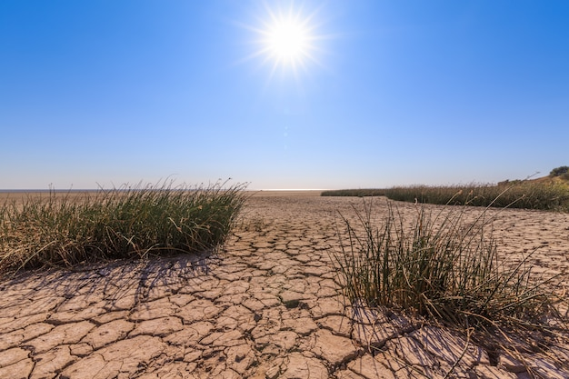 Gebrochenes land, spärliche vegetation, blauer himmel und strahlende sonne als symbol der dürre