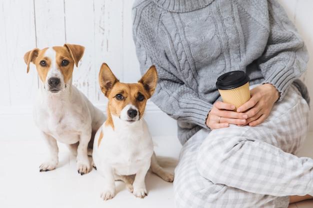 Geernteter schuss der nicht erkennbaren frau in gestrickter warmer strickjacke, hält mitnehmerkaffee