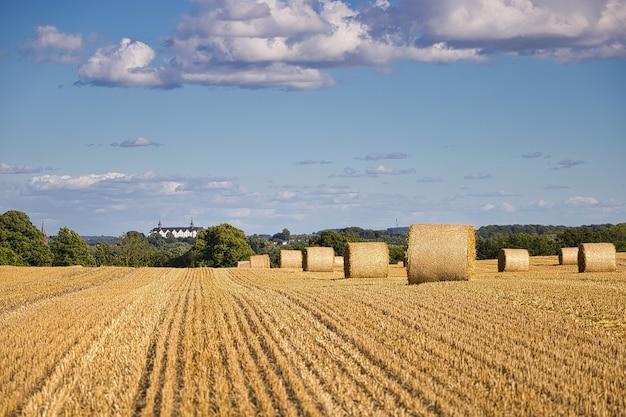 Geerntetes getreidefeld an einem sonnigen tag mit einigen wolken in deutschland eingefangen